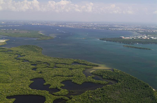 photo of Caloosahatchee River and Estuary