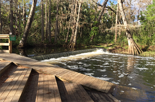 photo of the Loxahatchee River