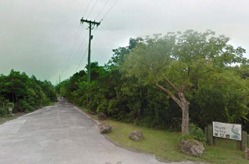 photo of tamiami trail