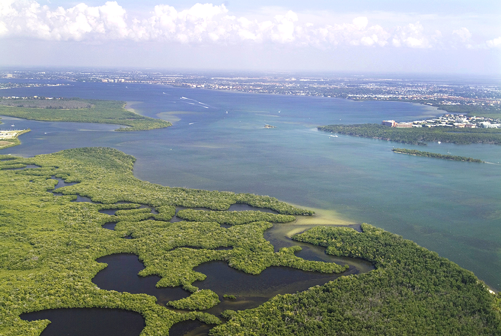 mouth of Caloosahatchee River