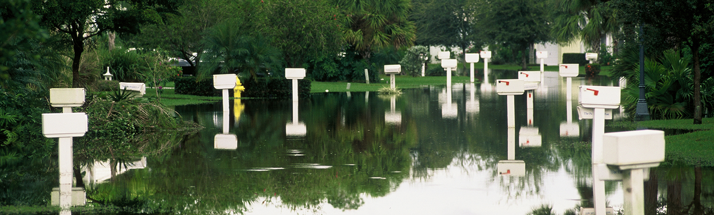 residential mailboxes in standing water