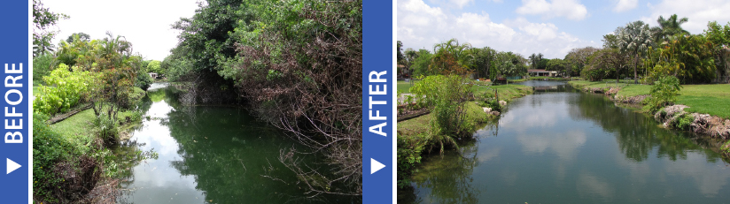 before and after removal of vegetation on the C-100A Canal right of way