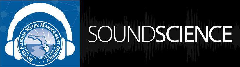 feature image sound science