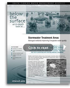 thumbnail for Below the Surface: Stormwater Treatment Areas