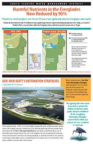 Click here for brochure on Improving Everglades Water Quality