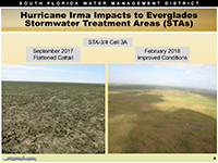 Click for Stormwater Treatment Areas (STAs)