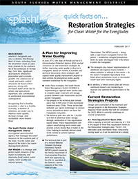 cover for Quick Facts on Restoration Strategies for Clean Water for the Everglades
