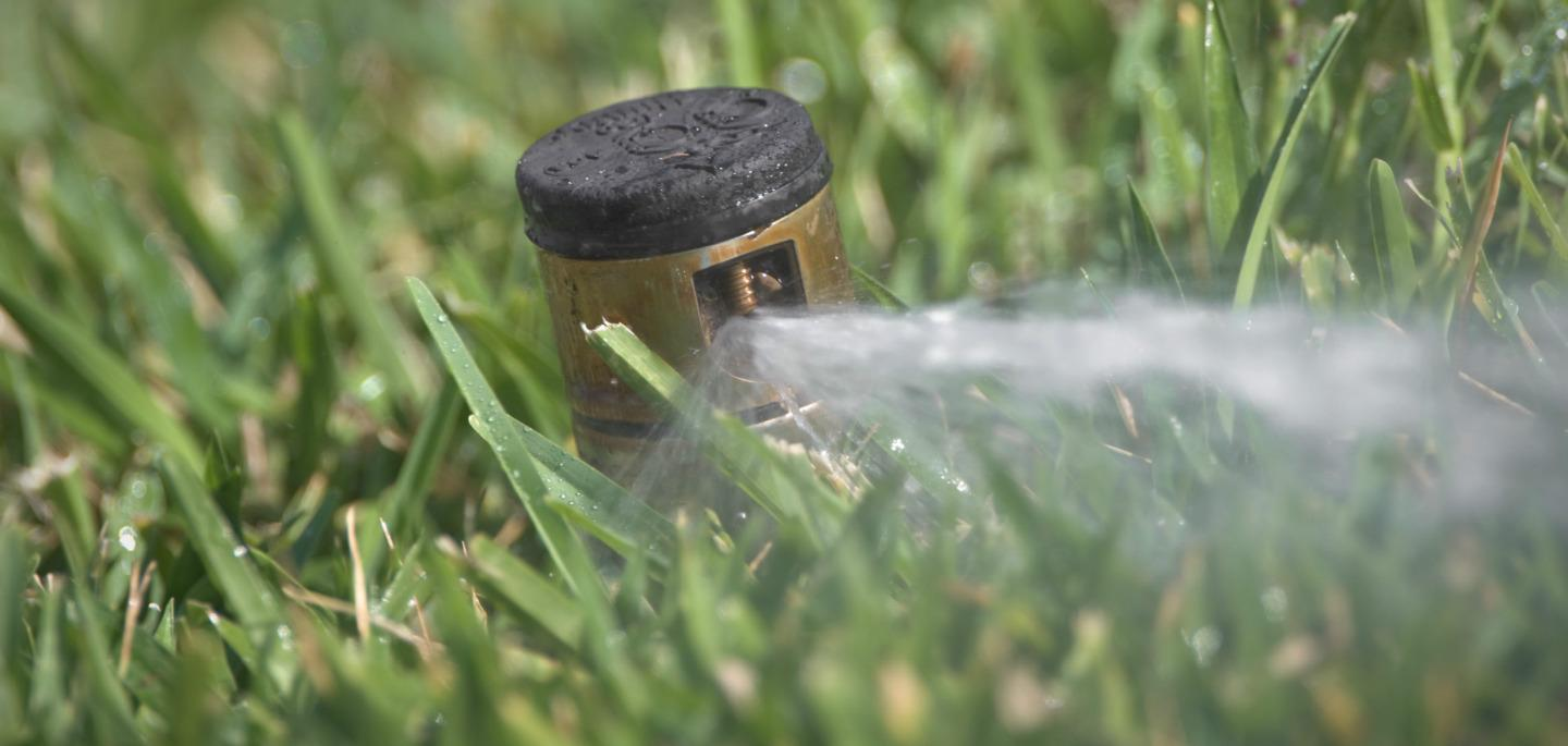 sprinkler in grass shooting water