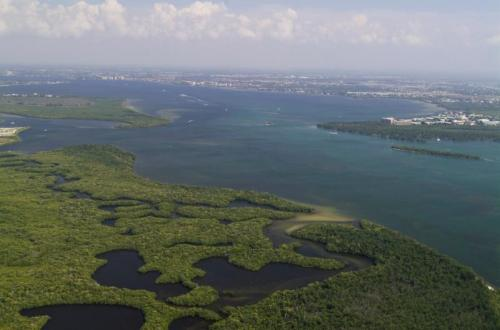 photo of caloosahatchee river